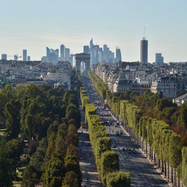 Location Immobilier Professionnel Local commercial Paris 75008